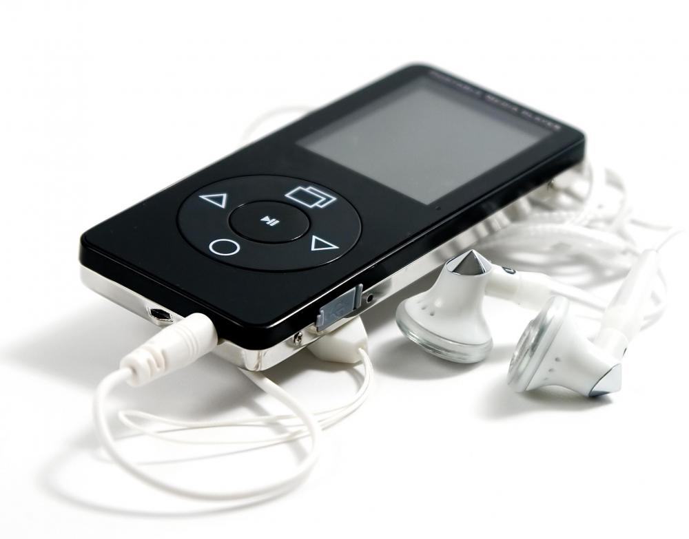 Portable media players use multimedia software.